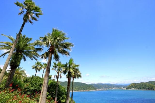 宮崎の風景の画像